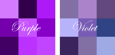 Violet Purple Palette