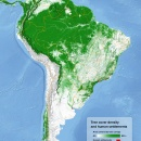 Tree cover and urban areas of South America