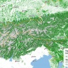 Tree cover of the Eastern Alps