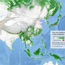 Tree cover of South and East Asia