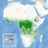 Tree cover and urban areas of Africa